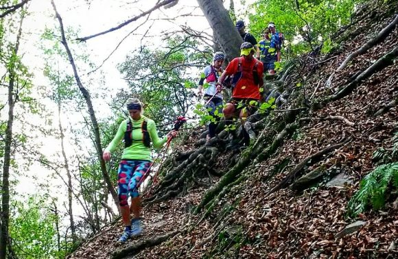 Trailtour Siebengebirge